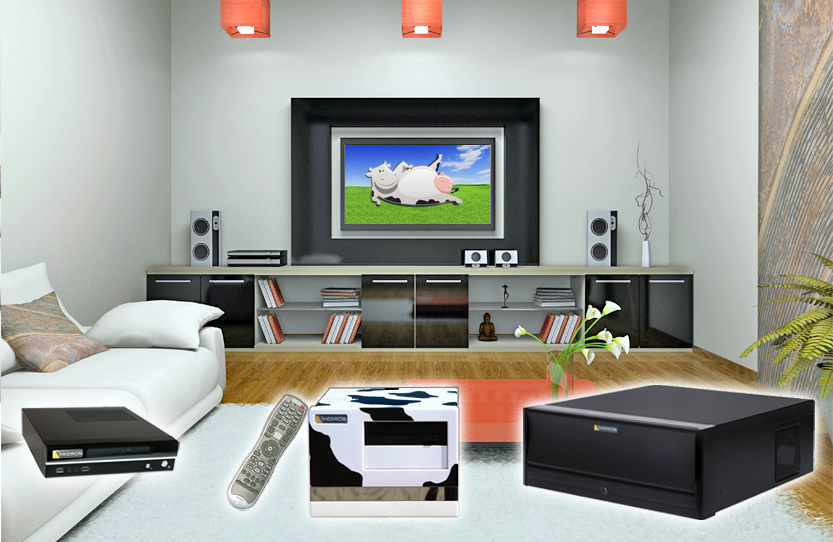 livingroom_home_hedron